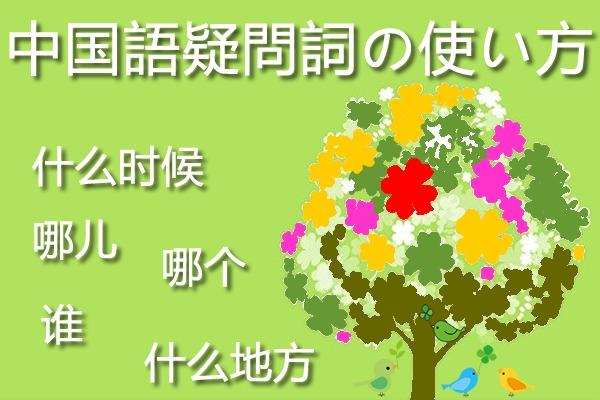 中国語疑問詞の使い方
